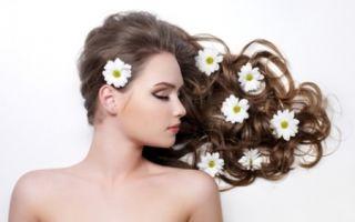 Обычный лопух как универсальное средство для волос