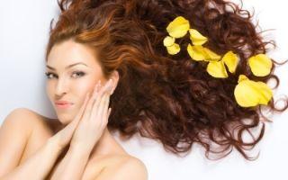 Уход за волосами: польза чайного дерева