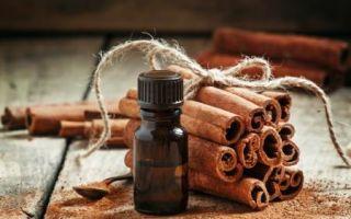 О полезных свойствах масла корицы для ваших локонов